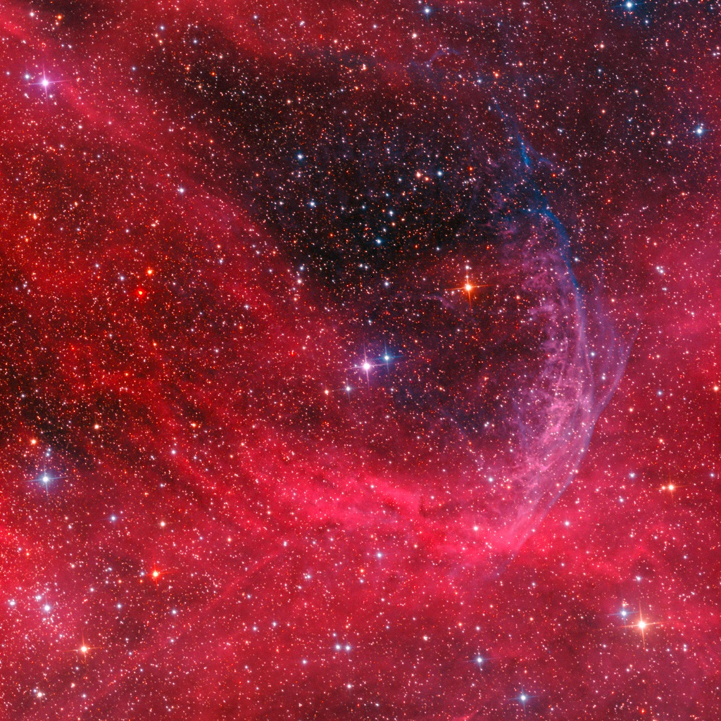 Stelle Galassie Nebulose Buchi neri - Pagina 5 WR-134-Ring-Nebula-by-Don-Goldman