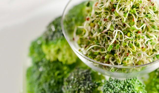 Bông cải xanh - nguồn dưỡng chất tuyệt vời giúp đẩy lùi bệnh ung thư Mam-bong-cai