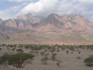 صور ومعلومات عن جبل رضوى 300px-%D8%AC%D8%A8%D9%84_%D8%B1%D8%B6%D9%88%D9%89
