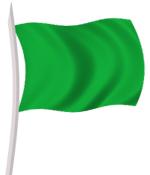 صور علم ليبيا الاخضر الجماهيرية MS271009P2