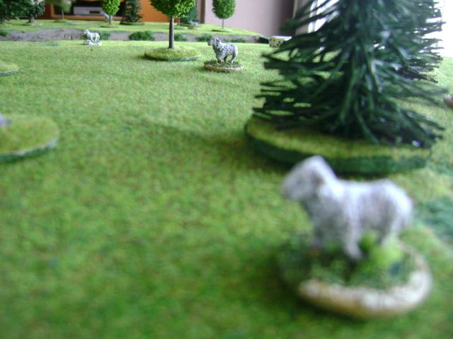 Figurines d'animaux pour mouvements cachés Recomout2