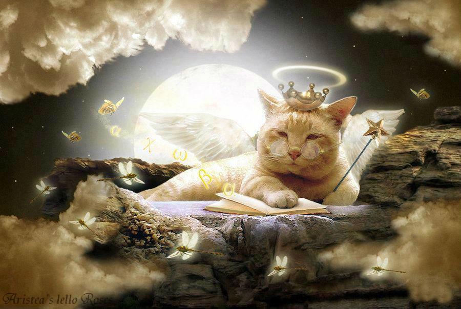 Архангел Метатрон. Сознание животных: божественность кошек & собак 7556508_orig