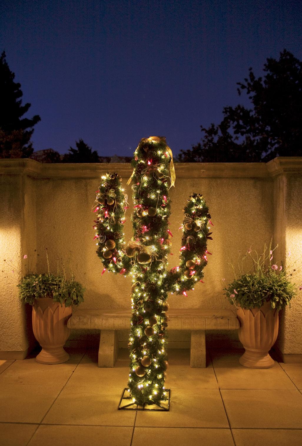 Cereus hildmanianus v spiralis Tlaqepaque-sedona-cactus-christmas-tree