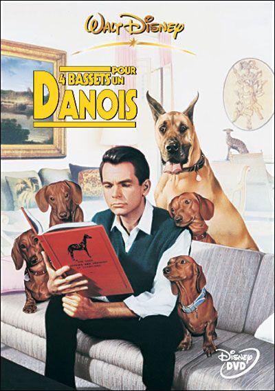 Quel sont vos films préférés avec des chiens ? - Page 3 B08db7e1