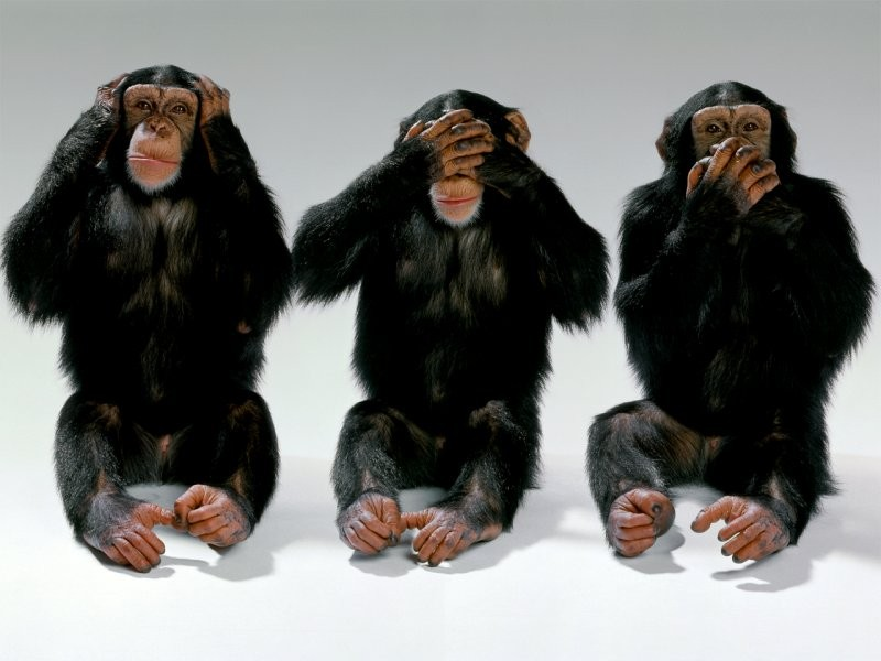 The United States of the Solar System, A.D. 2133 (Book Eight) Wildlife-monkeys-hear-no-evil-see-no-evil-speak-no-evil