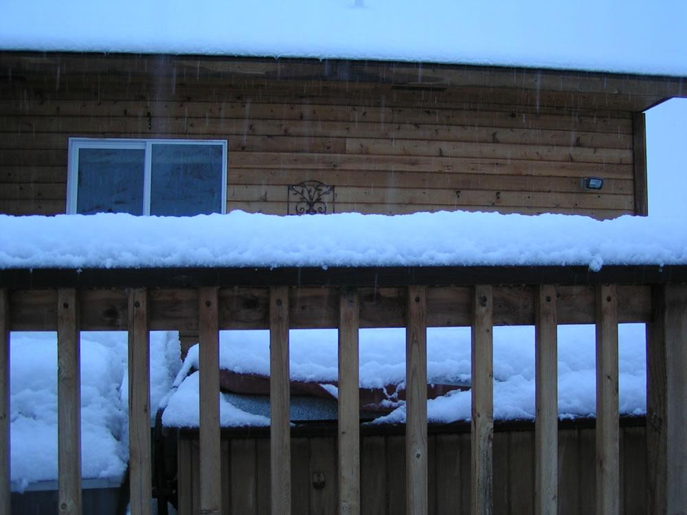 Random picture thread Snow-june1