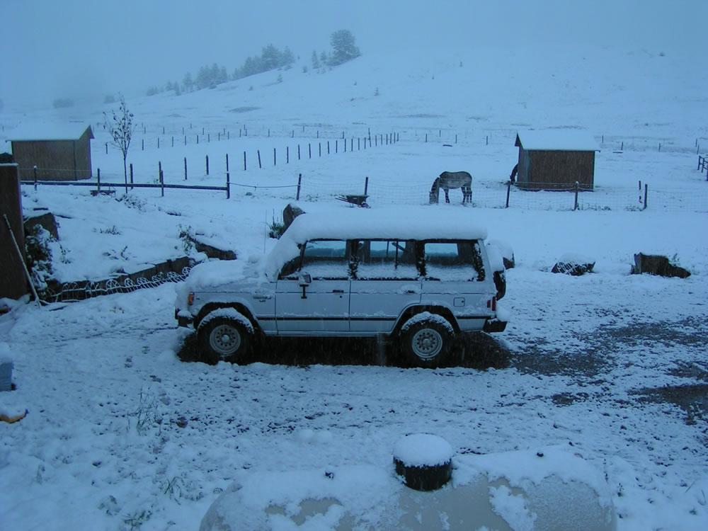 Random picture thread Snow-june3