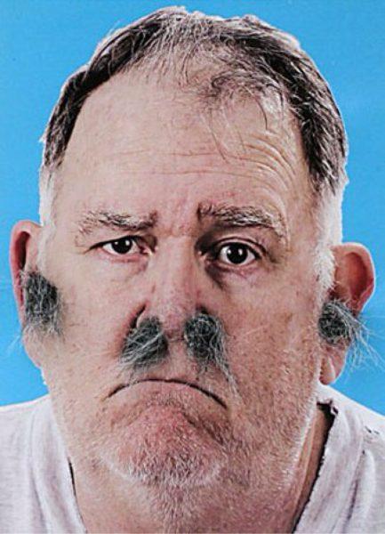 Chest hair. Nose-Hair-Ear-Hair-Ashley-Weston-433x600