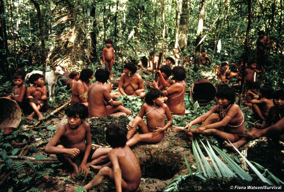¿ El ser humano es bueno por naturaleza? - Página 3 Braz-yano-fw-32_screen