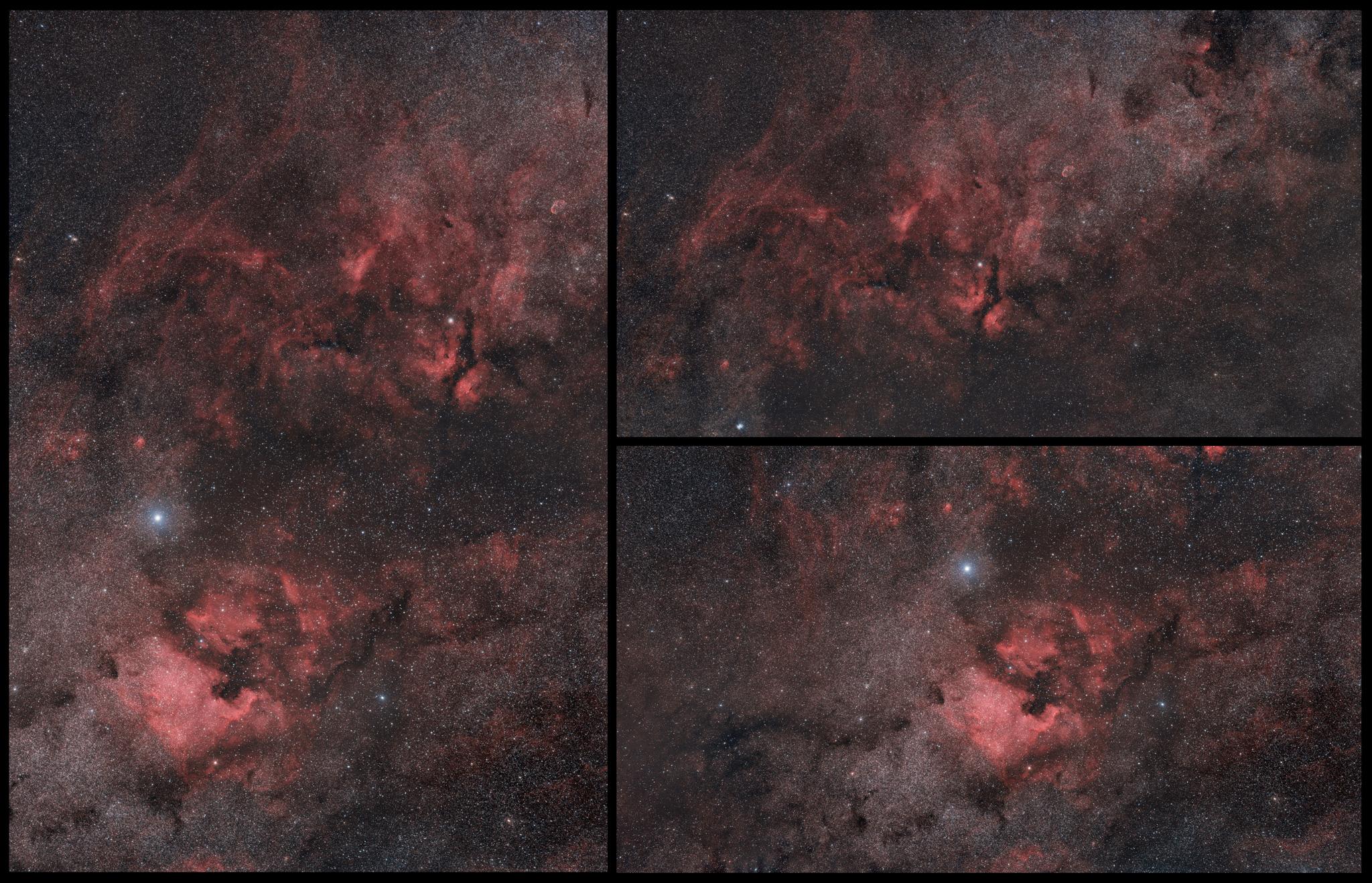 Le Cygne, le Sagittaire, Rho Ophiuchi au A7s 135mm MosaicA7s2k