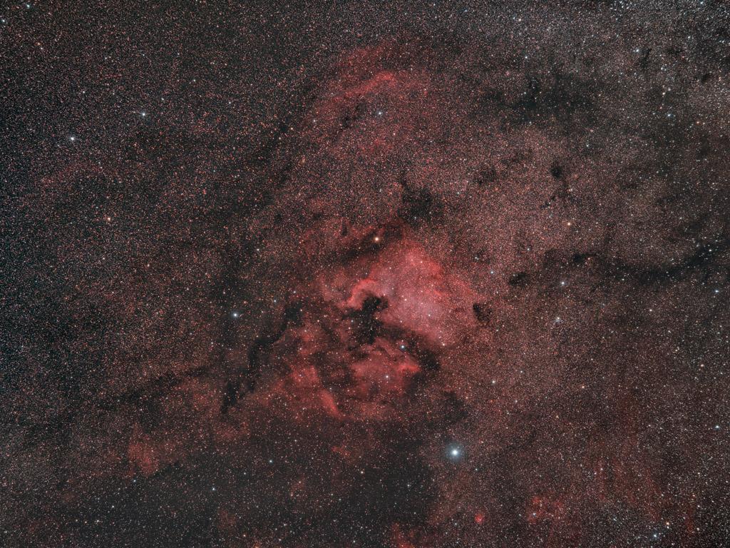 NGC7000 au Nikon D810 et D810A au 135mm Ngc7000_d810A_1k