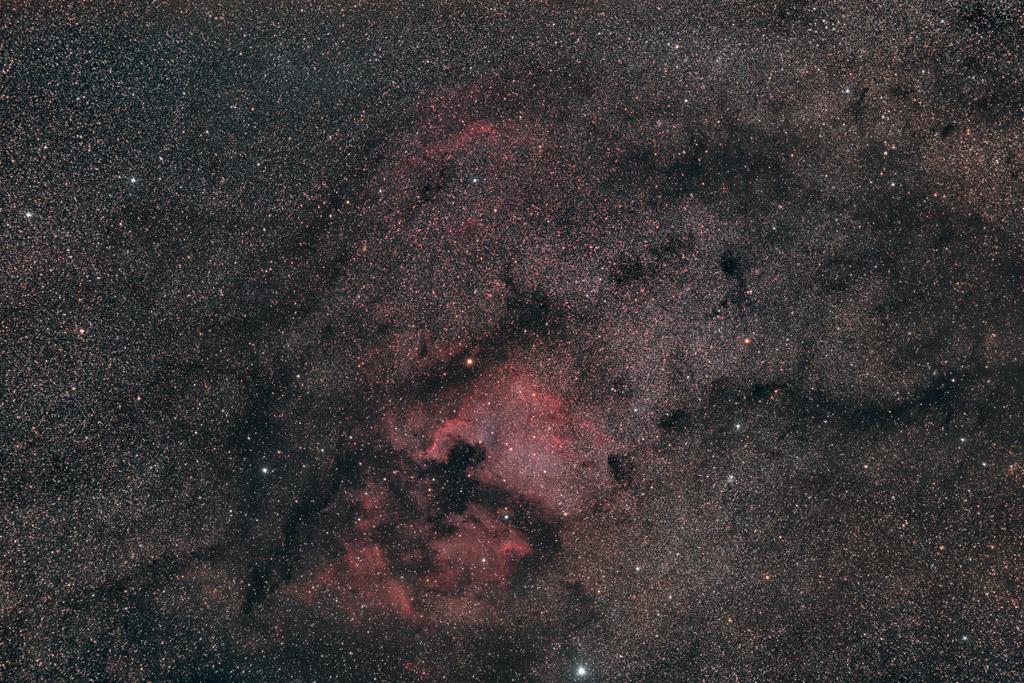 NGC7000 au Nikon D810 et D810A au 135mm Ngc7000_d810_1k