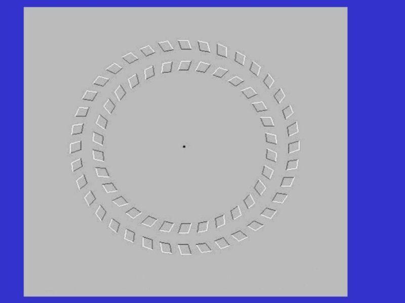 Иллюзия восприятия 1371