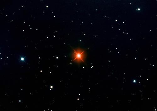 Stelle Galassie Nebulose Buchi neri - Pagina 10 Hinds-Crimson-Star