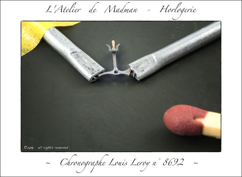 Micro-brasure en horlogerie P2789663475-4