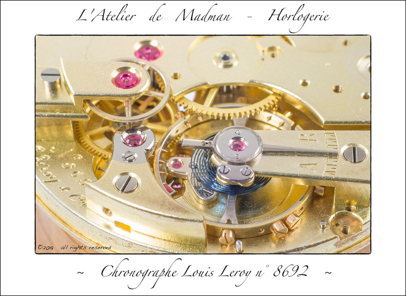 Micro-brasure en horlogerie P2816427872-4