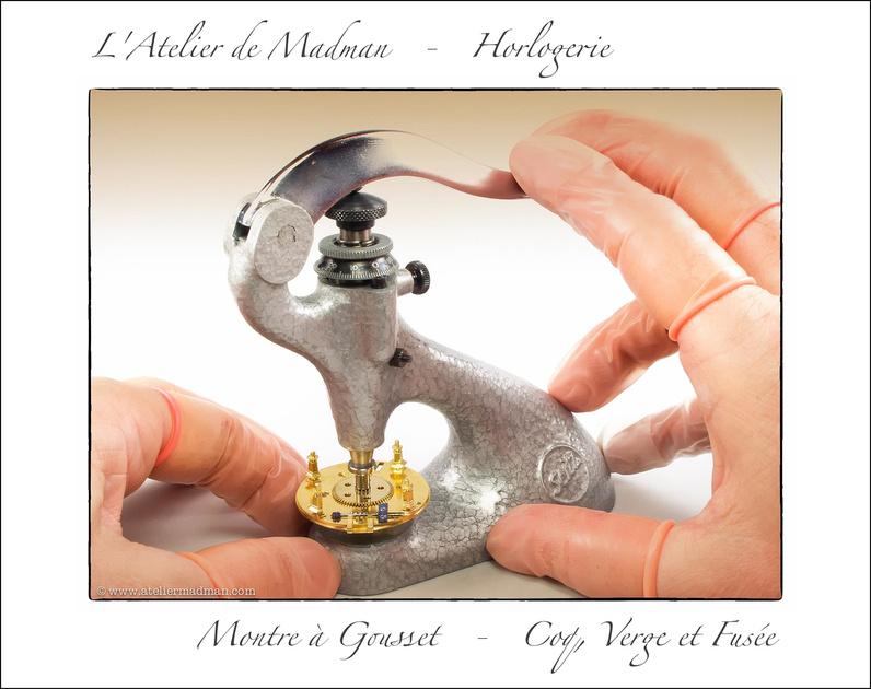Montre à Gousset - Coq, Verge et Fusée - Page 2 P1232566630-4