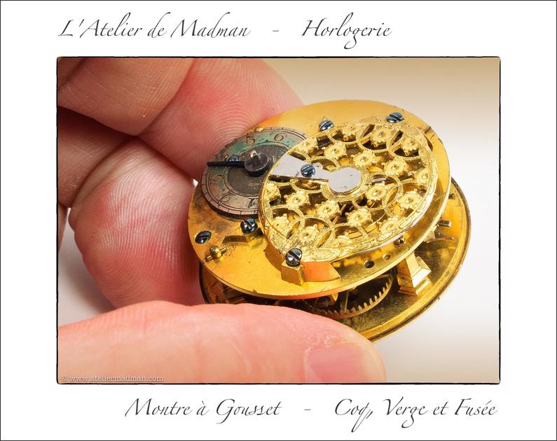 Montre à Gousset - Coq, Verge et Fusée P1223048914-4
