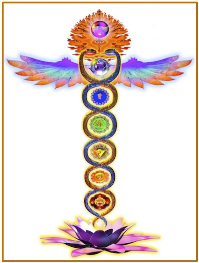 La Serpiente de las Psicografias, Podria ser un Mensaje - Página 2 Kundalini2