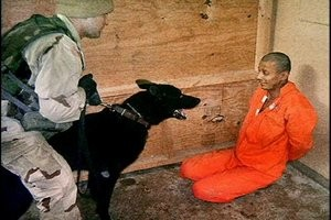 De Lucentum Tocapelotum Guantanamo-dog
