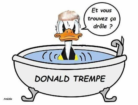 Fast and Furious Flood Humour-donald-trempe