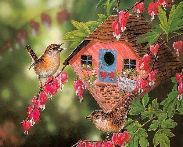 Les oiseaux F7b540a6
