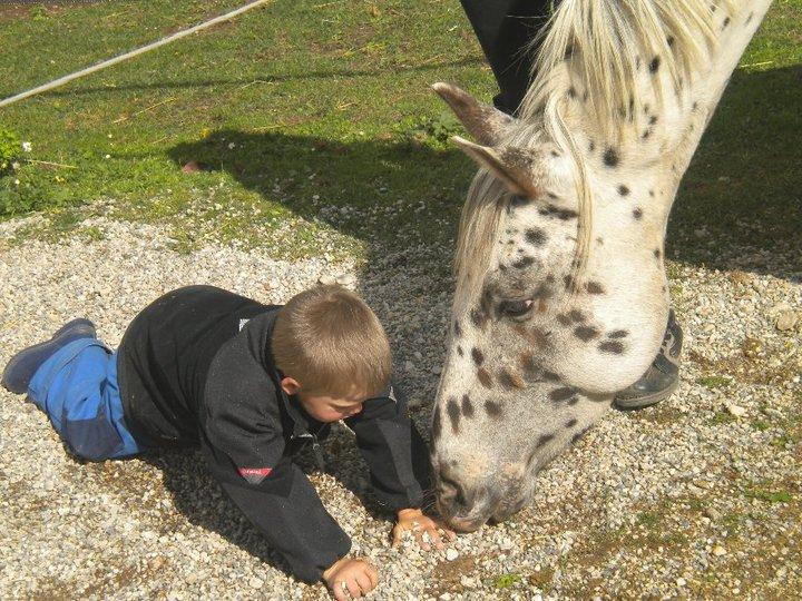 Thème de décembre : les chevaux et les enfants 3053001729_2_3_LbPn5omr