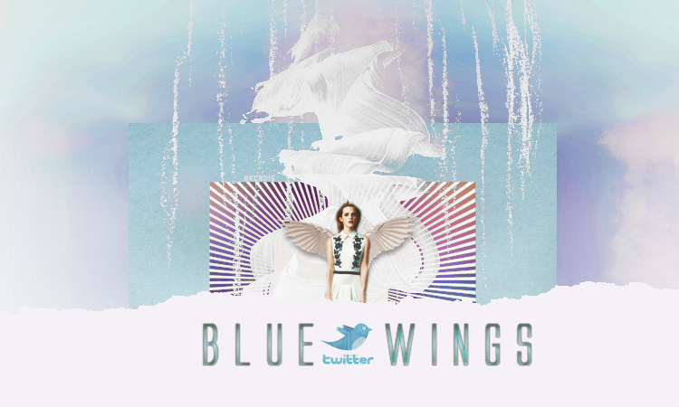 blue wings test 3209041459_1_8_VAt2MQIb