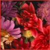 Аватары с цветами - Страница 6 Flowersatthemarket