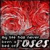 Аватары с цветами - Страница 6 Rosebed