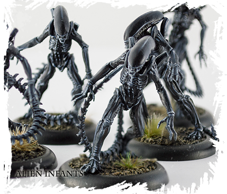 Aliens vs Predator: The Hunt Begins Infants