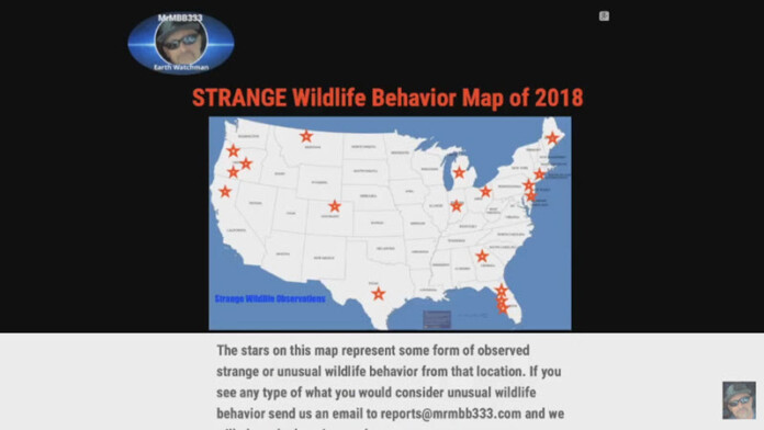 More NEW video of strange wildlife behavior | NEW map at website – MrMBB333 2018-04-07_15-28-29-696x392