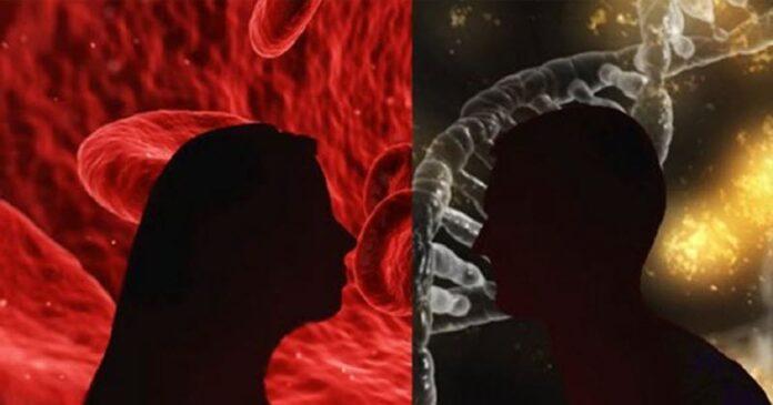 Rh-Negative Blood: An Exotic Bloodline or Random Mutation? Rhnegativeblood-696x365