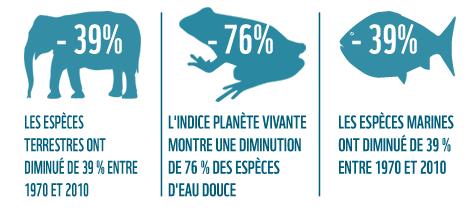 MOTIVOS PARA LA INDIGNACION 3 Lpi_infographic_3col_fr_6381