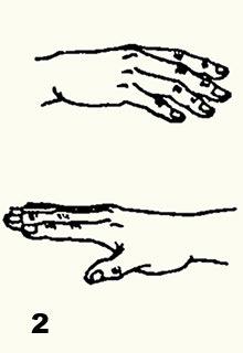Цигун. Метод «опускания пальцев» (бань чжи фа) 14d95f36c35a