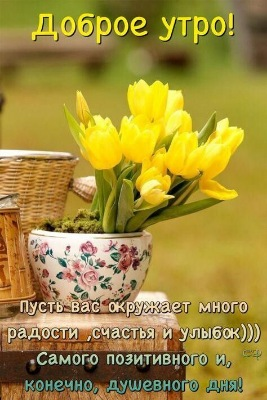 Утреннее настроение - 2 - Страница 4 Bf499dfe014e