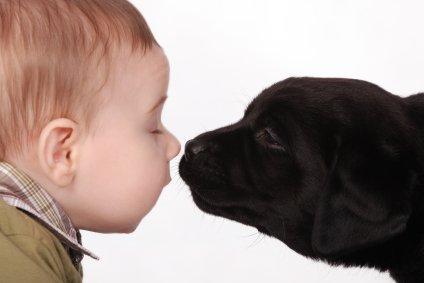 Le Chien, meilleur ami de l'homme? Baby-and-puppy