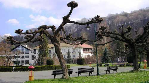 Srpski turizam - Banje - Page 3 Banja-koviljaca-geografski-polozaj