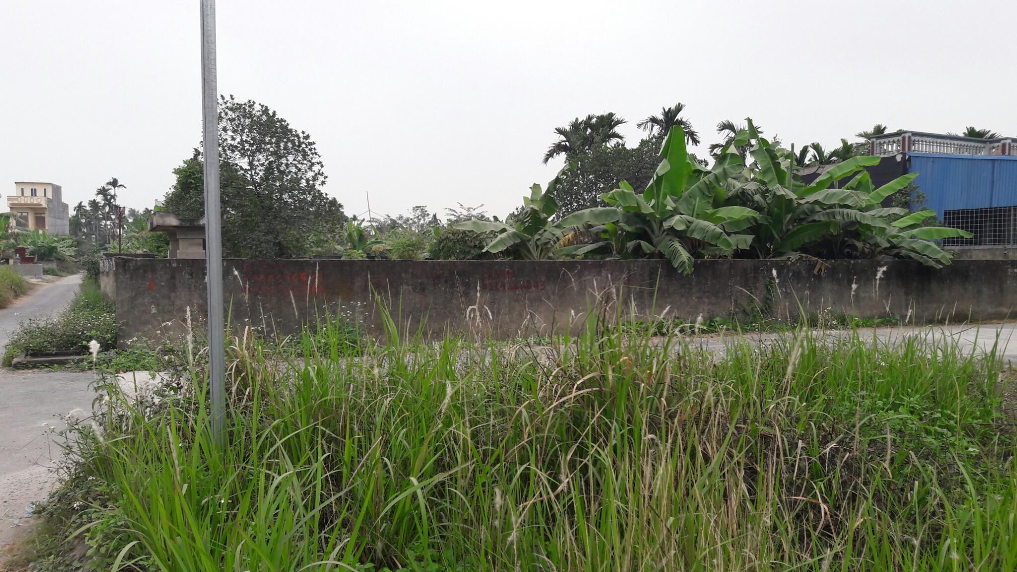 Toàn quốc - Cho thuê 900m2 đất 3 mặt tiền tại khu dự án thôn Vân Tra, xã An Đồng, Anh Dương, Hải Phòng Cho_thue_dat_van_tra