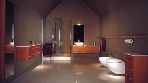 حمامات فاخرة 2010  Bathroom