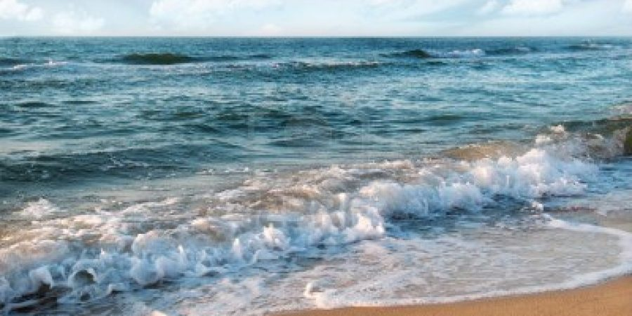 'Never-Seen-Before' Viruses Containing Weird DNA Were Just Discovered in the Ocean Sandy-beach-and-beautiful-ocean-waves1-900x450