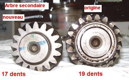 La Doc Mobile (photos p:1-2-3-4 et 6!) Arbres_secondaires