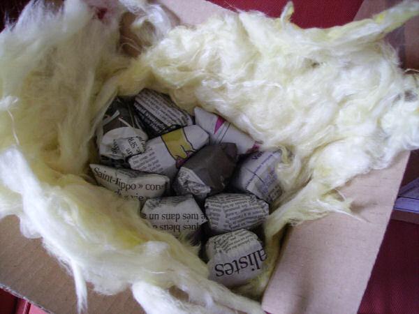 envoi de bettas en hivers... souvenirs souvenirs 07