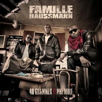 Musique ! - Page 22 Famillehaussmann1350