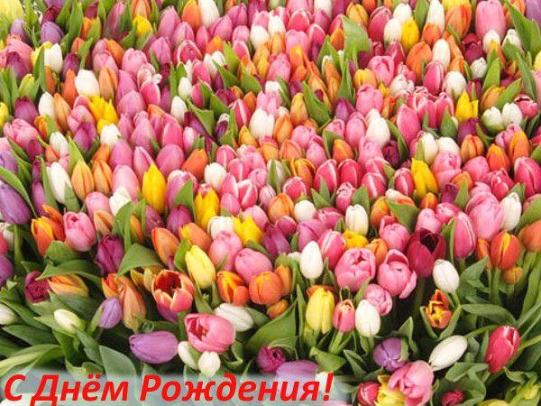 С днем рождения! - Страница 21 Thumb_c70411a75d2625a399aa82e6cddaaa22_resize_600_1000