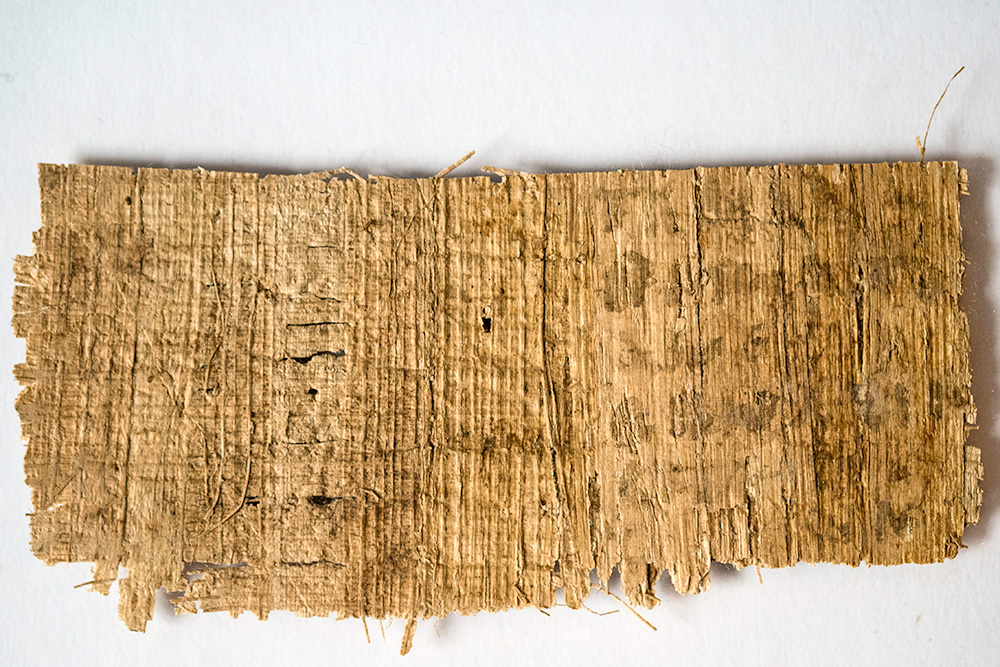Thuban Fleet Disclosures Papyrus_back_lg