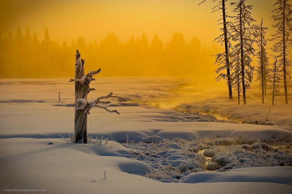 Вот так зима... - Страница 3 2424