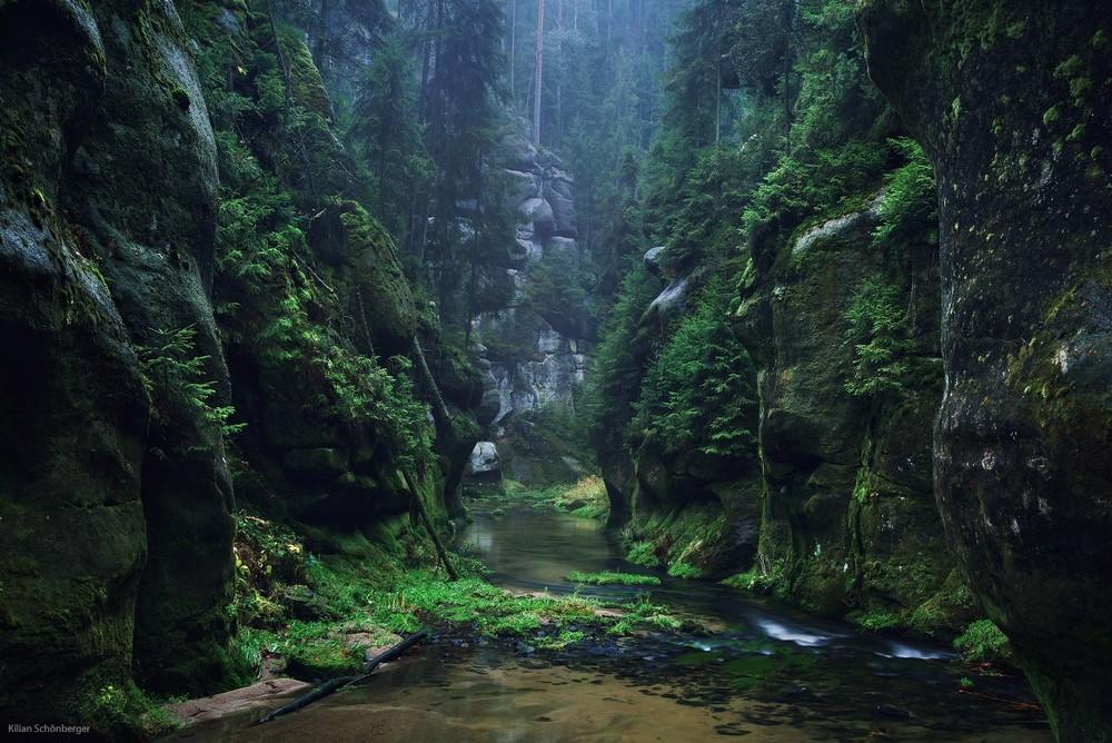 Удивительные пейзажи, вдохновленные сказками братьев Гримм Schonberger04