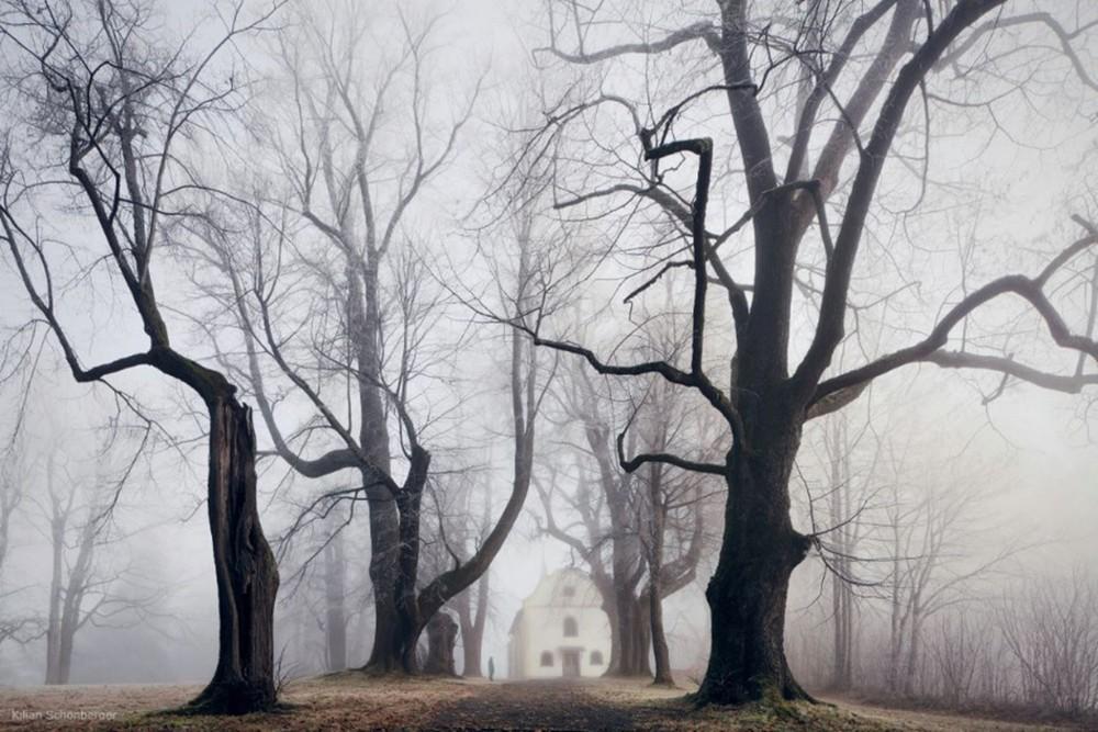 Удивительные пейзажи, вдохновленные сказками братьев Гримм Schonberger17