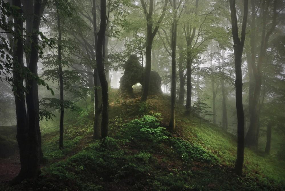 Удивительные пейзажи, вдохновленные сказками братьев Гримм Schonberger21